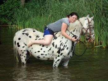 Daher leben im moment 16 ponys und 7 reitpferde auf unserer ranch
